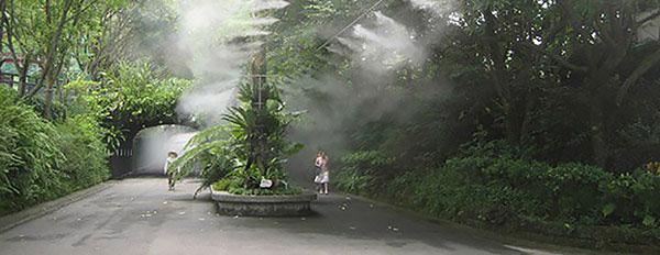 مه پاش